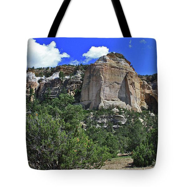 Tote Bag featuring the photograph La Ventana Arch by Gary Kaylor