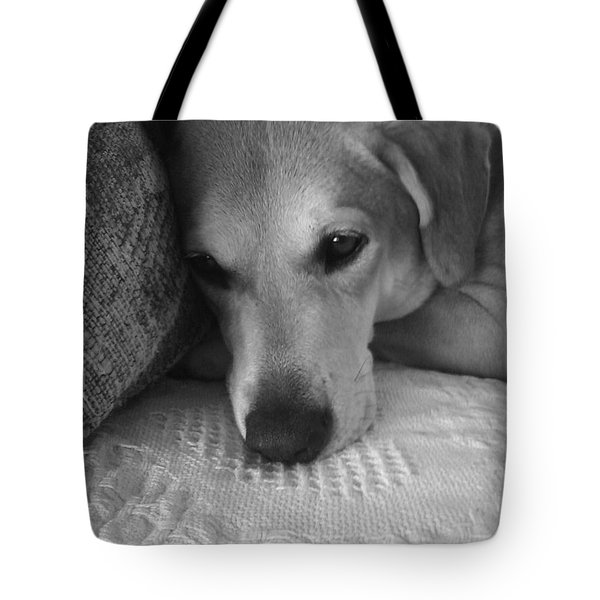 Lab On A Couch Tote Bag