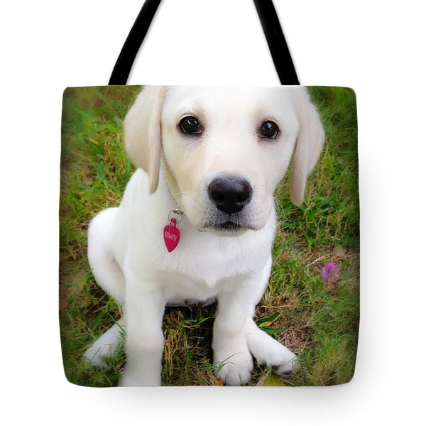 Lab Puppy Tote Bag by Stephen Anderson
