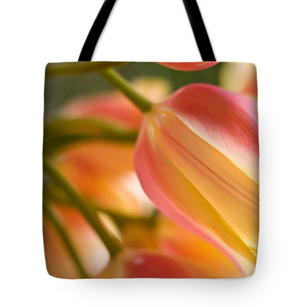Labrynth Of Spring Tote Bag by Mike Reid