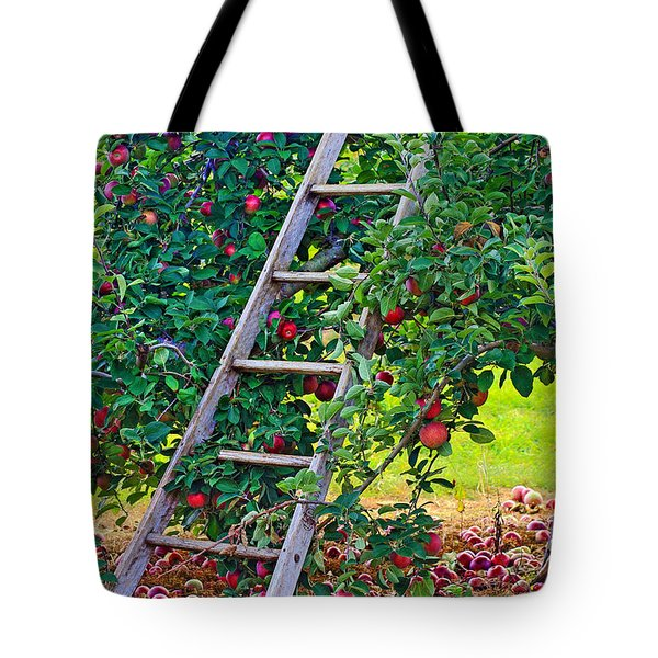 Ladder To The Top Tote Bag