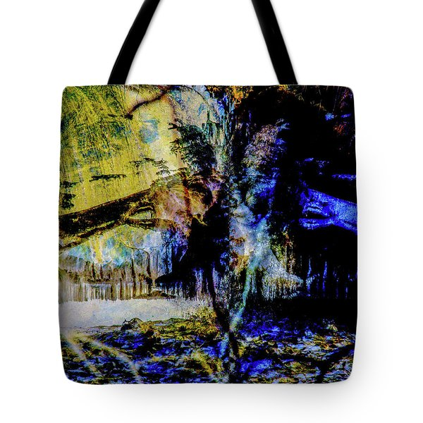 Lady At The Beach Through The Frozen Falls Tote Bag
