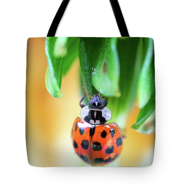 Tote Bag featuring the photograph Lady Bug In A Heatwave by Brian Hale