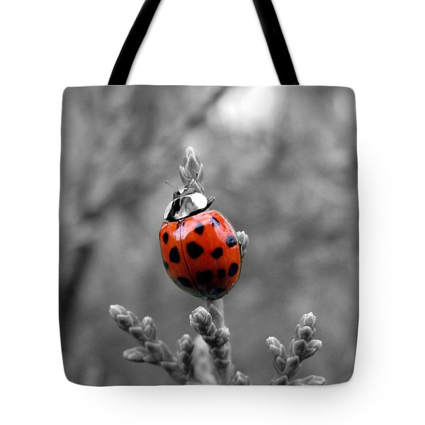 Lady Bug Tote Bag by Misha Bean