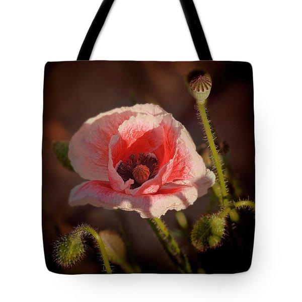 Lady Di Poppy Tote Bag