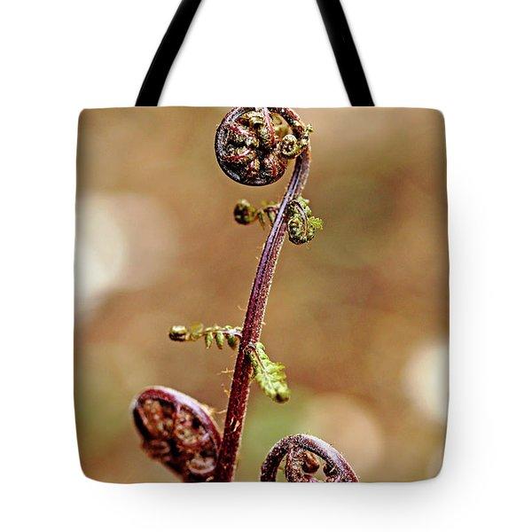 Lady Fern Spirals Tote Bag