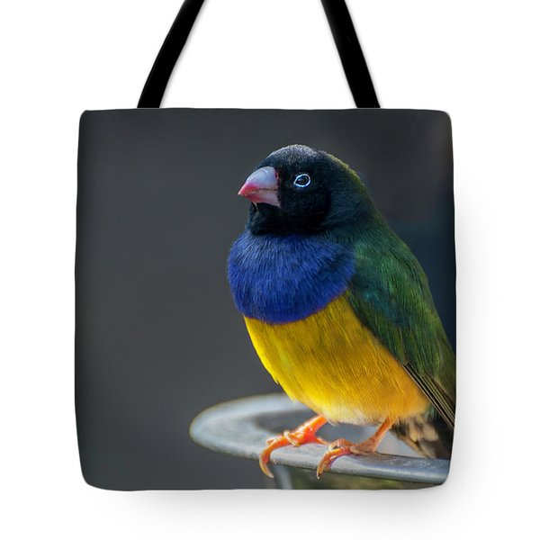 Lady Gouldian Finch Tote Bag