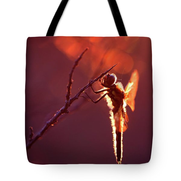 Lady In Red II Tote Bag