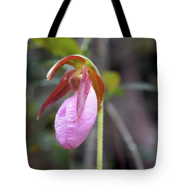 Lady Slipper Orchid Tote Bag by Meta Gatschenberger