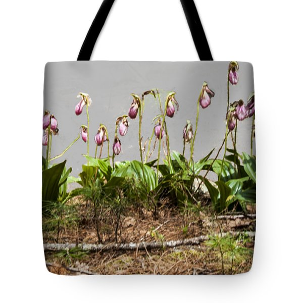 Lady Slippers Tote Bag by Daniel Hebard