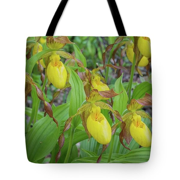 Tote Bag featuring the photograph Lady Slippers by Paul Schultz