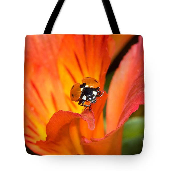 Ladybug About To Fly Tote Bag