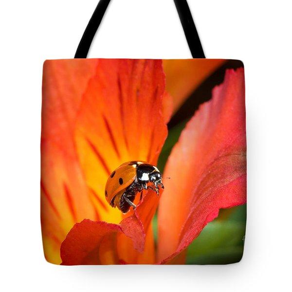 Ladybug And Lily Tote Bag