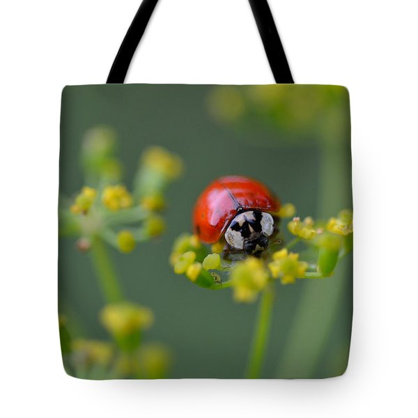 Ladybug In Red Tote Bag