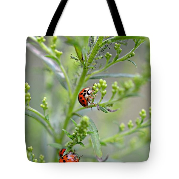 Tote Bag featuring the photograph Ladybug Ladybug... by Lila Fisher-Wenzel