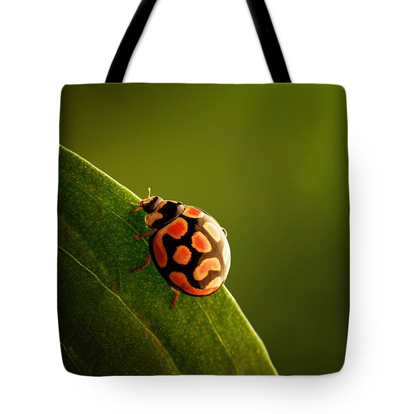 Ladybug  On Green Leaf Tote Bag