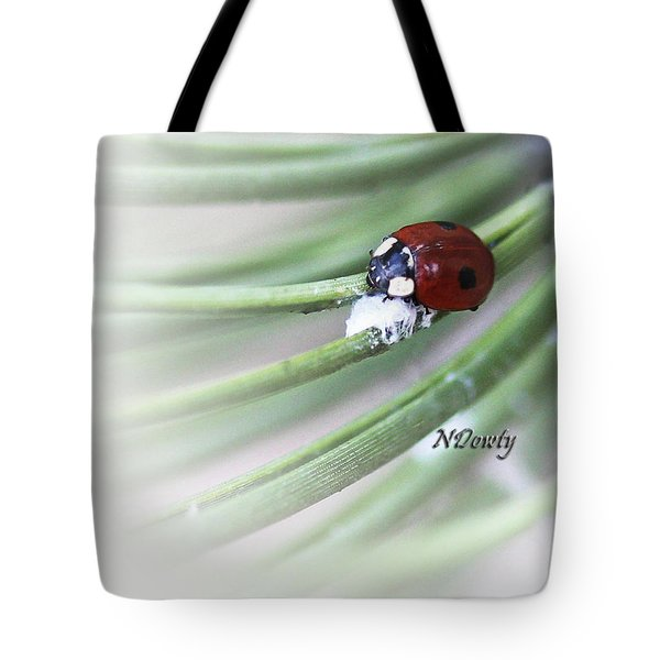 Ladybug On Pine Tote Bag