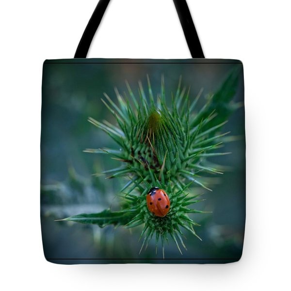 Ladybug On Thistle Tote Bag