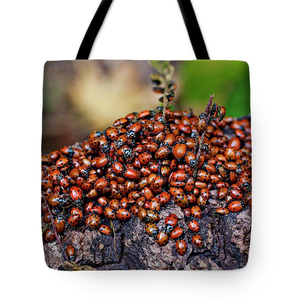 Ladybugs On Branch Tote Bag