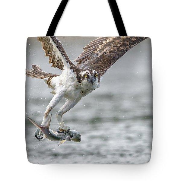 Ladyfish Tote Bag by Jim Gray