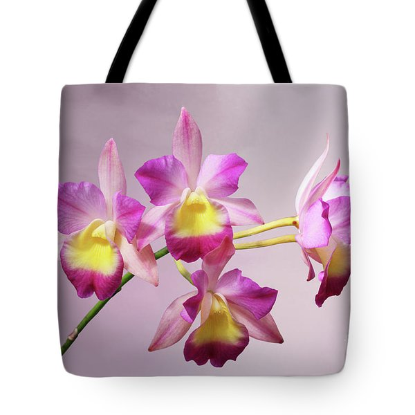 Laeliocatonia Hybrid Orchids V2 Tote Bag