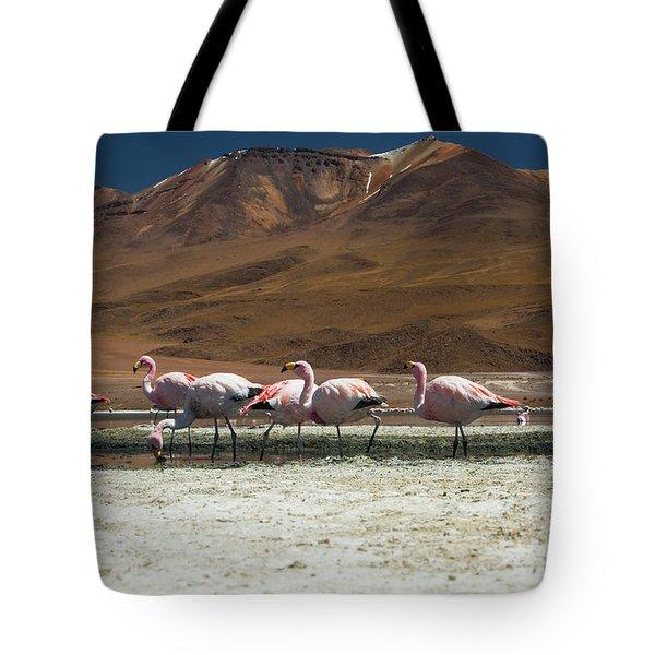 Laguna Colorada, Andes, Bolivia Tote Bag by Gabor Pozsgai