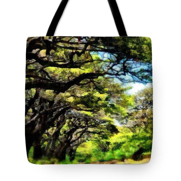 Lahaina Drive Maui Tote Bag