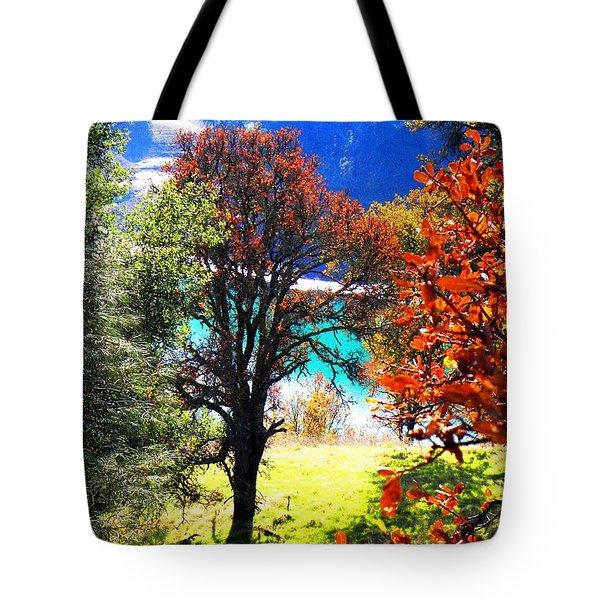 Lake Berryessa Tote Bag