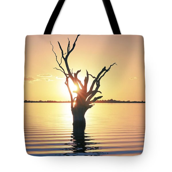 Tote Bag featuring the photograph Lake Bonney Sunset by Ray Warren