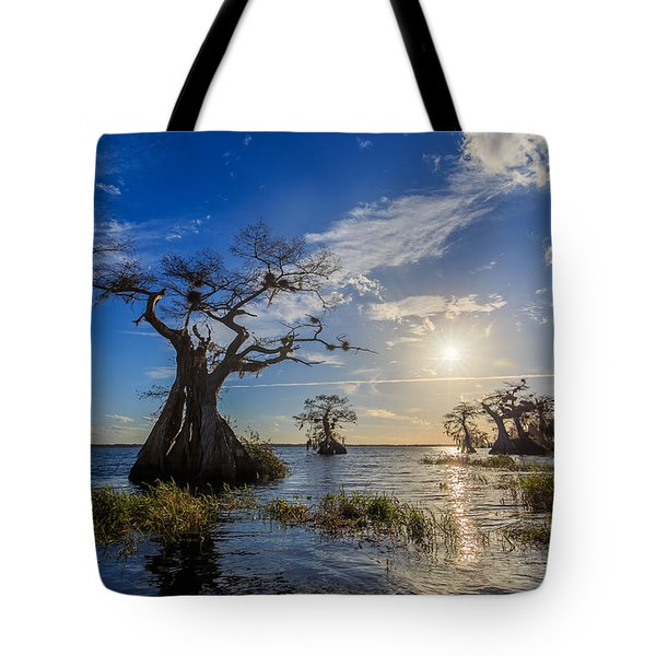 Lake Disston Cypress Paradise Tote Bag