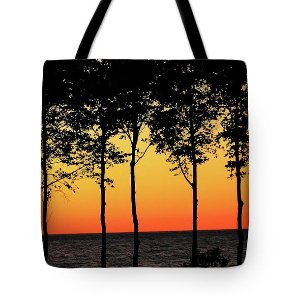 Tote Bag featuring the photograph Lake Erie Silhouettes by Bruce Patrick Smith