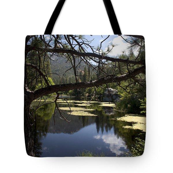 Lake Fulmor Tote Bag