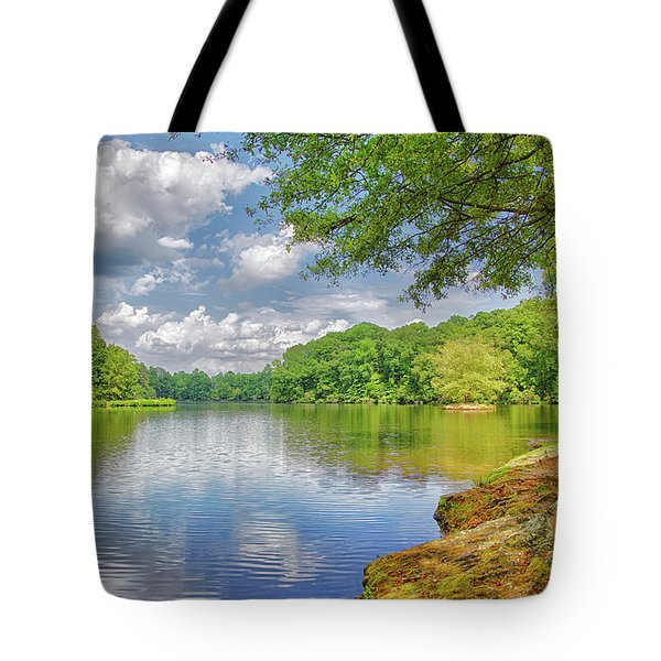 Lake Haigler 2014 01 Tote Bag