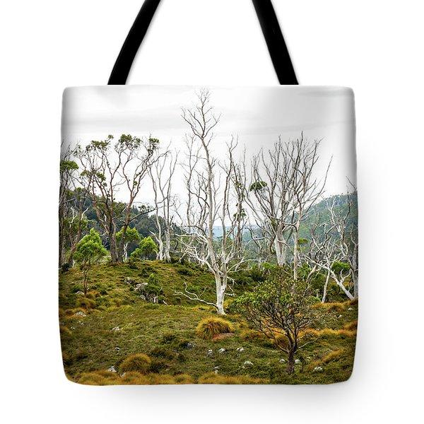 Lake Lilla Track 1 Tote Bag by Lexa Harpell