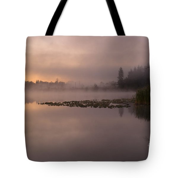 Lake Marsh Tote Bag