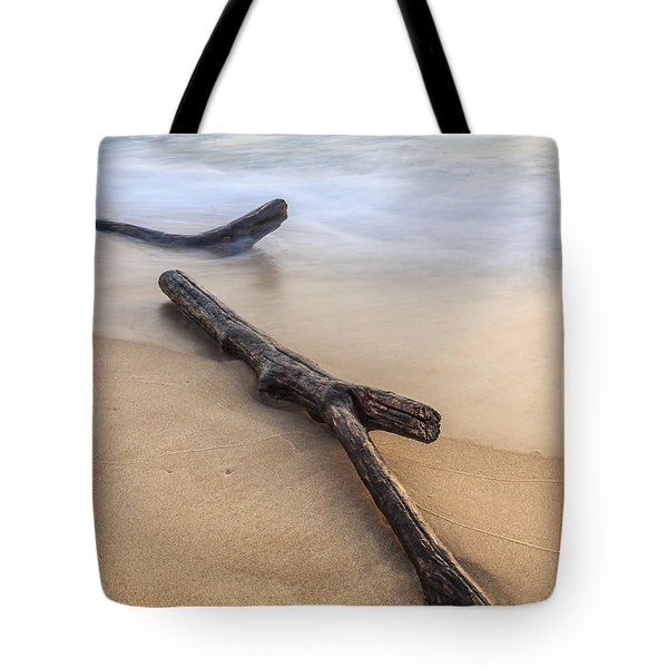 Tote Bag featuring the photograph Lake Michigan Beach Driftwood by Adam Romanowicz