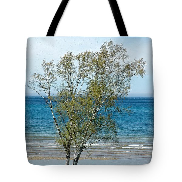Tote Bag featuring the photograph Lake Michigan Birch Tree by LeeAnn McLaneGoetz McLaneGoetzStudioLLCcom