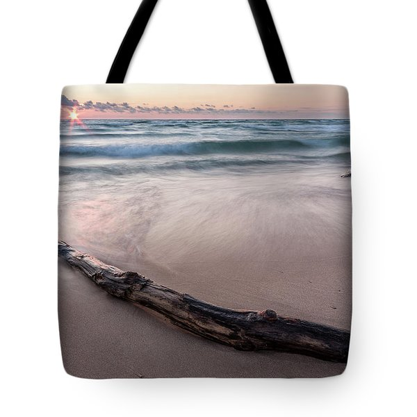 Tote Bag featuring the photograph Lake Michigan Driftwood by Adam Romanowicz