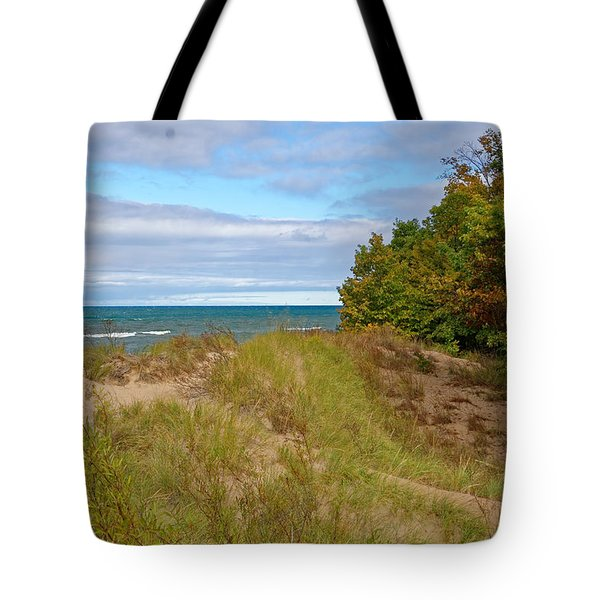 Lake Michigan Shore Tote Bag