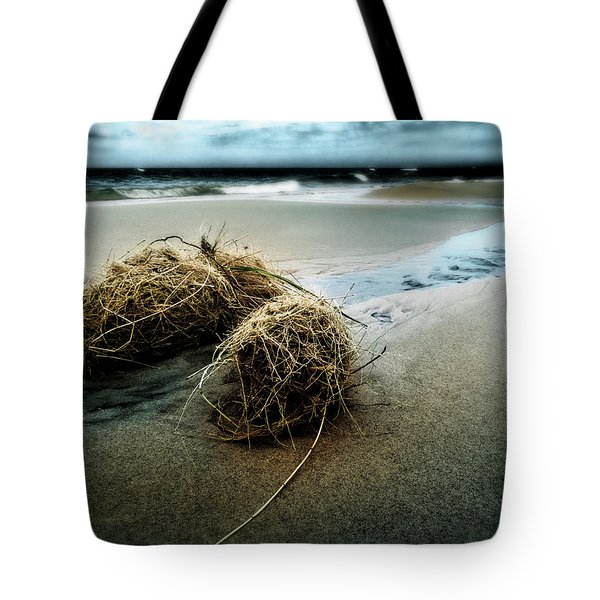Lake Michigan Tumbleweed Tote Bag