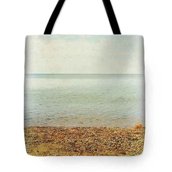 Tote Bag featuring the photograph Lake Michigan With Stony Shore by Michelle Calkins