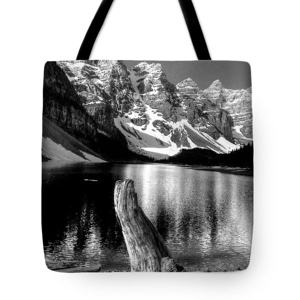 Lake Moraine Drift Wood Tote Bag