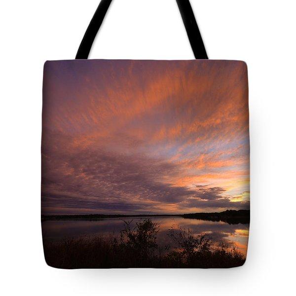 Lake Moss 2504b Tote Bag