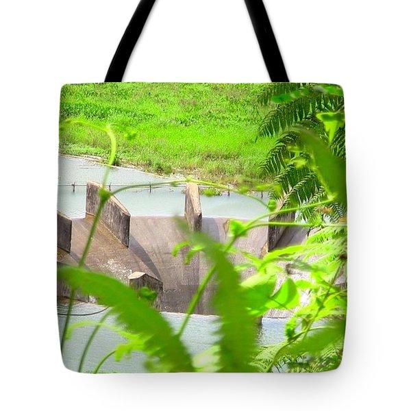 Lake Overflow Tote Bag