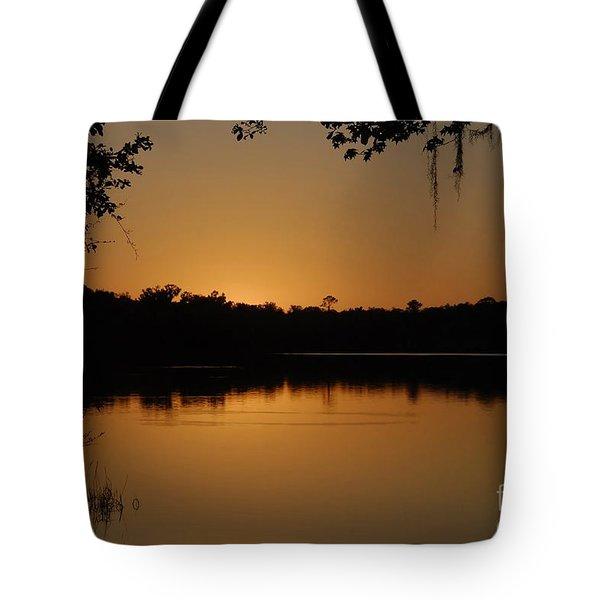 Lake Reflections Tote Bag by David Lee Thompson