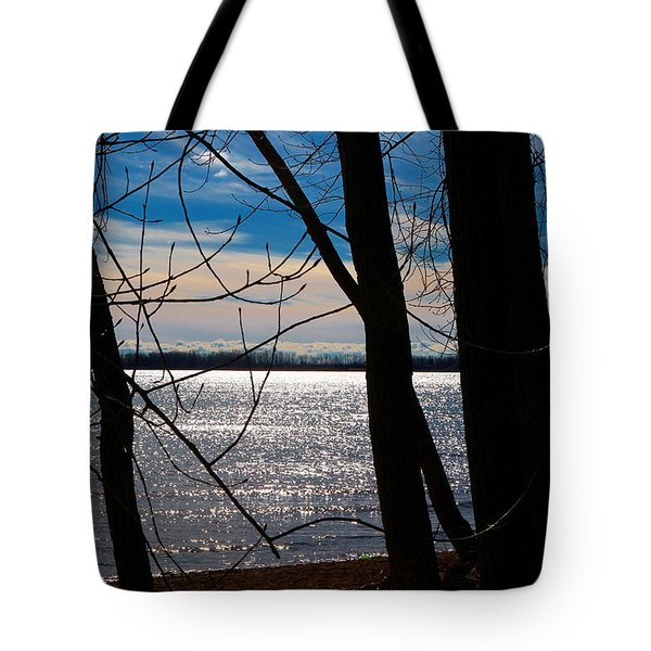 Tote Bag featuring the photograph Lake Romance by Valentino Visentini