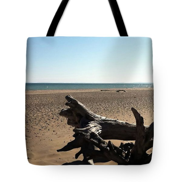 Lake Superior Driftwood Tote Bag