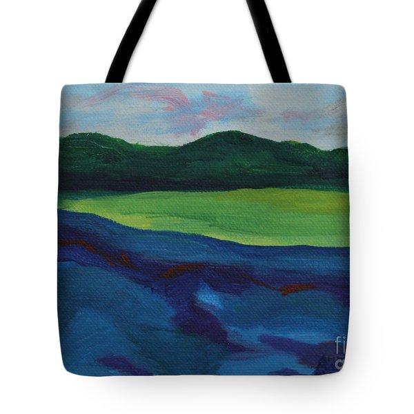 Lake Visit Tote Bag by Annette M Stevenson