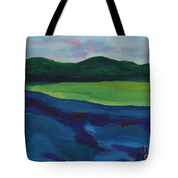 Lake Visit Tote Bag
