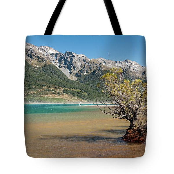 Lake Wakatipu Tote Bag by Werner Padarin